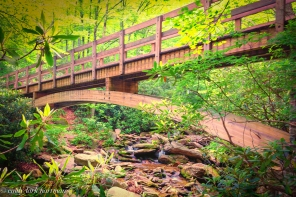 Tanawha Trail Footbridge